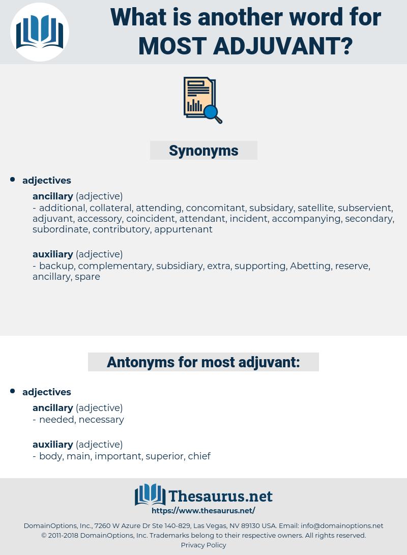 most adjuvant, synonym most adjuvant, another word for most adjuvant, words like most adjuvant, thesaurus most adjuvant