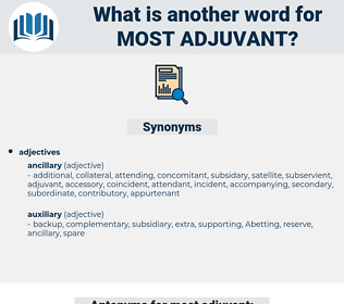 most adjuvant, synonym most adjuvant, another word for most adjuvant, words like most adjuvant, thesaurus most adjuvant