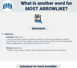 most arrowlike, synonym most arrowlike, another word for most arrowlike, words like most arrowlike, thesaurus most arrowlike
