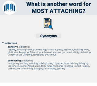 most attaching, synonym most attaching, another word for most attaching, words like most attaching, thesaurus most attaching