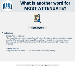 most attenuate, synonym most attenuate, another word for most attenuate, words like most attenuate, thesaurus most attenuate
