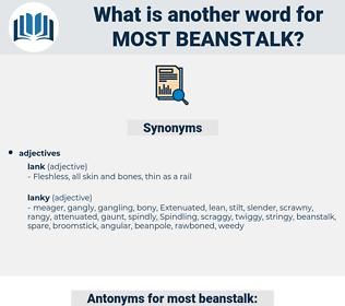 most beanstalk, synonym most beanstalk, another word for most beanstalk, words like most beanstalk, thesaurus most beanstalk