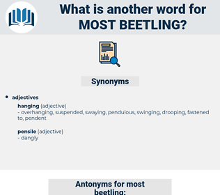 most beetling, synonym most beetling, another word for most beetling, words like most beetling, thesaurus most beetling