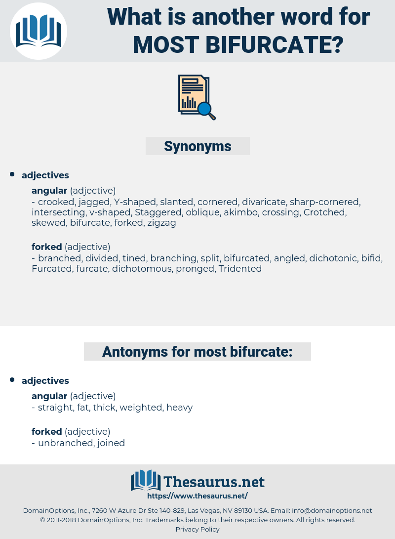 most bifurcate, synonym most bifurcate, another word for most bifurcate, words like most bifurcate, thesaurus most bifurcate
