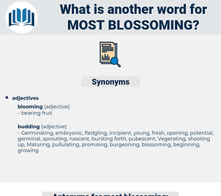 most blossoming, synonym most blossoming, another word for most blossoming, words like most blossoming, thesaurus most blossoming