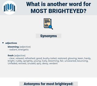 most brighteyed, synonym most brighteyed, another word for most brighteyed, words like most brighteyed, thesaurus most brighteyed