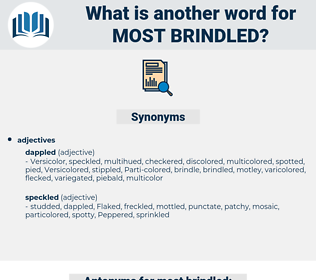 most brindled, synonym most brindled, another word for most brindled, words like most brindled, thesaurus most brindled