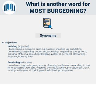 most burgeoning, synonym most burgeoning, another word for most burgeoning, words like most burgeoning, thesaurus most burgeoning