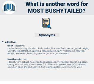 most bushytailed, synonym most bushytailed, another word for most bushytailed, words like most bushytailed, thesaurus most bushytailed