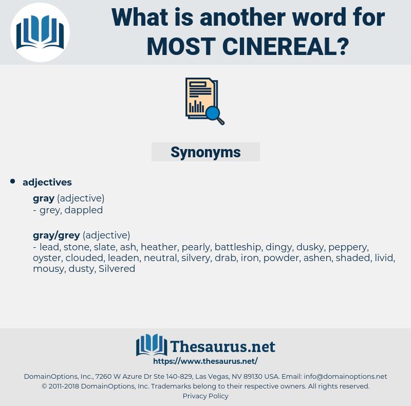 most cinereal, synonym most cinereal, another word for most cinereal, words like most cinereal, thesaurus most cinereal