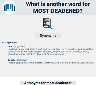 most deadened, synonym most deadened, another word for most deadened, words like most deadened, thesaurus most deadened