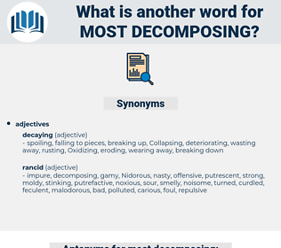 most decomposing, synonym most decomposing, another word for most decomposing, words like most decomposing, thesaurus most decomposing