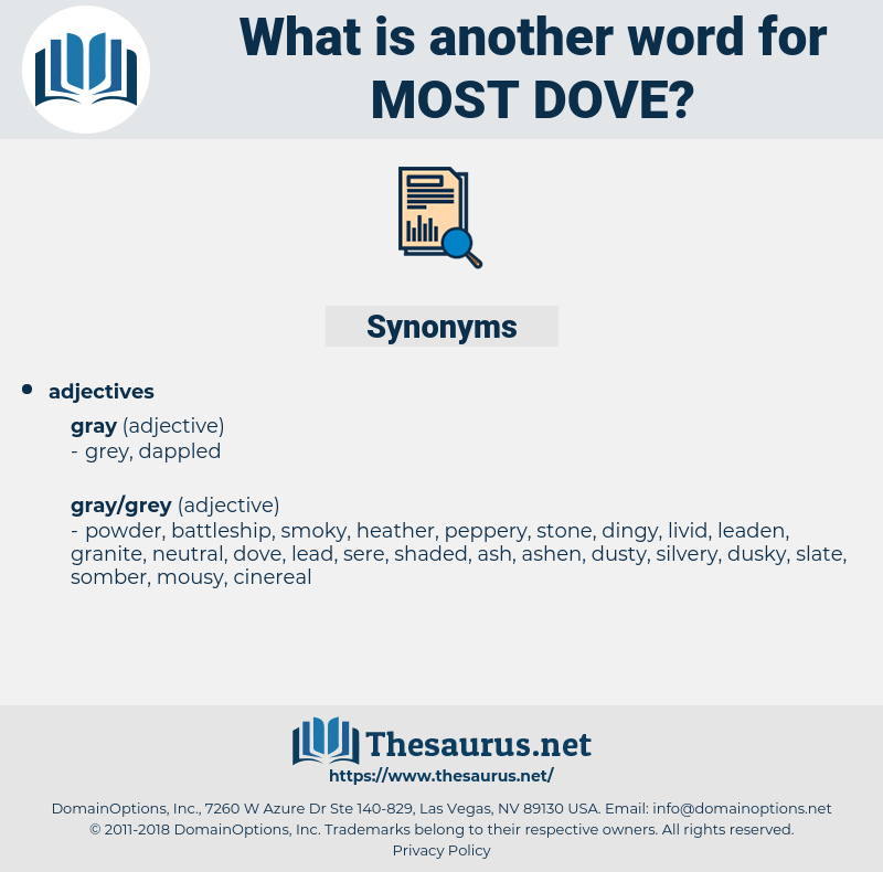 most dove, synonym most dove, another word for most dove, words like most dove, thesaurus most dove