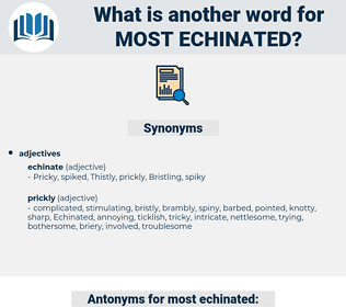 most echinated, synonym most echinated, another word for most echinated, words like most echinated, thesaurus most echinated