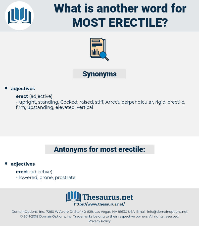 most erectile, synonym most erectile, another word for most erectile, words like most erectile, thesaurus most erectile