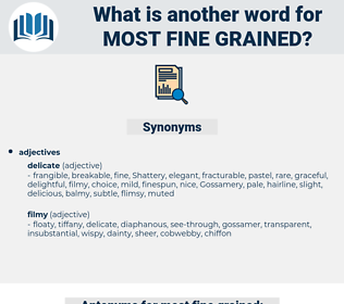 most fine-grained, synonym most fine-grained, another word for most fine-grained, words like most fine-grained, thesaurus most fine-grained