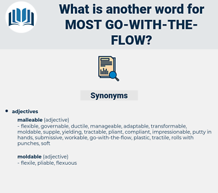 most go-with-the-flow, synonym most go-with-the-flow, another word for most go-with-the-flow, words like most go-with-the-flow, thesaurus most go-with-the-flow