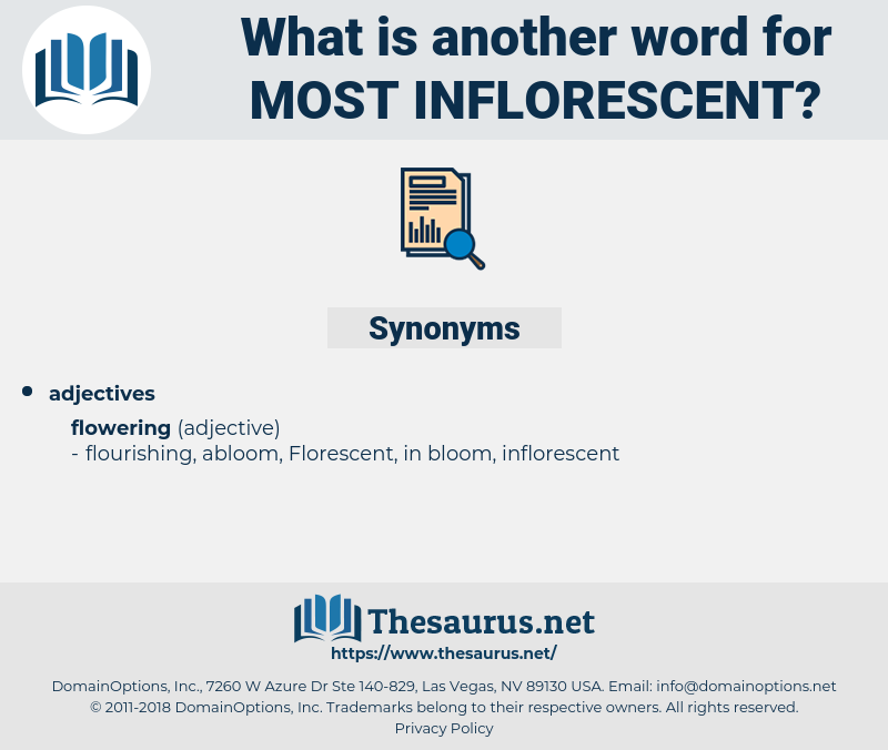 most inflorescent, synonym most inflorescent, another word for most inflorescent, words like most inflorescent, thesaurus most inflorescent