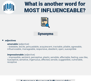 most influenceable, synonym most influenceable, another word for most influenceable, words like most influenceable, thesaurus most influenceable