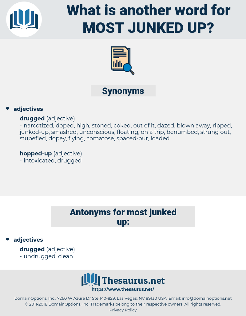 most junked-up, synonym most junked-up, another word for most junked-up, words like most junked-up, thesaurus most junked-up