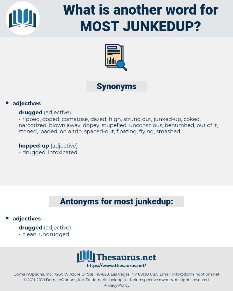 most junkedup, synonym most junkedup, another word for most junkedup, words like most junkedup, thesaurus most junkedup