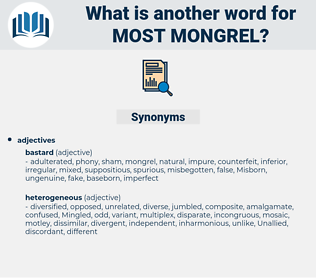 most mongrel, synonym most mongrel, another word for most mongrel, words like most mongrel, thesaurus most mongrel