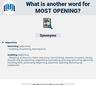 most opening, synonym most opening, another word for most opening, words like most opening, thesaurus most opening