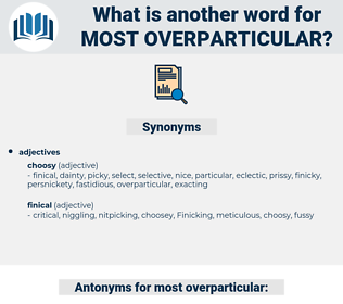 most overparticular, synonym most overparticular, another word for most overparticular, words like most overparticular, thesaurus most overparticular