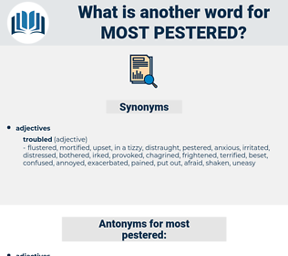 most pestered, synonym most pestered, another word for most pestered, words like most pestered, thesaurus most pestered