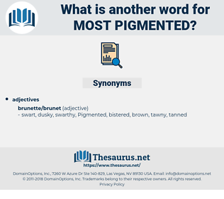most pigmented, synonym most pigmented, another word for most pigmented, words like most pigmented, thesaurus most pigmented