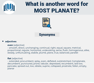 most planate, synonym most planate, another word for most planate, words like most planate, thesaurus most planate