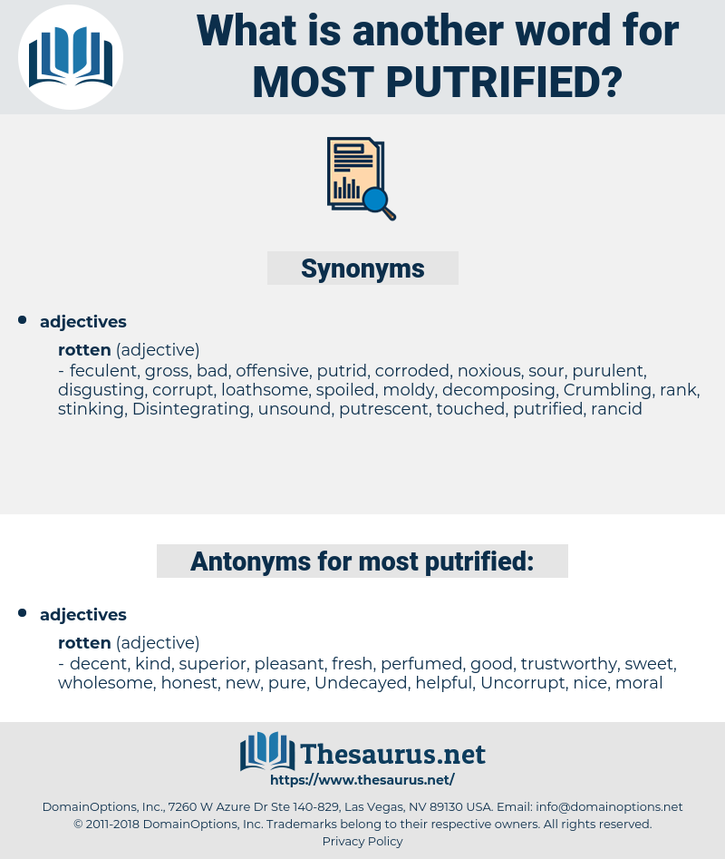 most putrified, synonym most putrified, another word for most putrified, words like most putrified, thesaurus most putrified