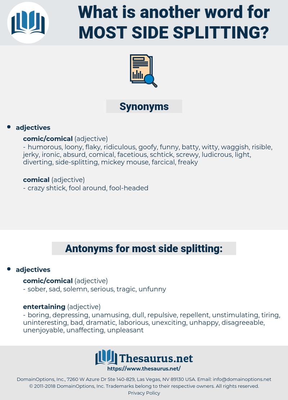 most side splitting, synonym most side splitting, another word for most side splitting, words like most side splitting, thesaurus most side splitting