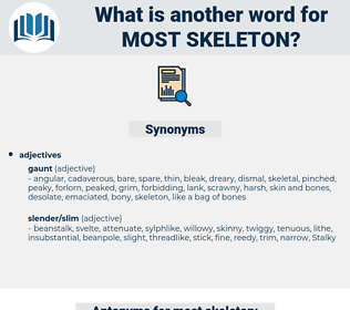most skeleton, synonym most skeleton, another word for most skeleton, words like most skeleton, thesaurus most skeleton