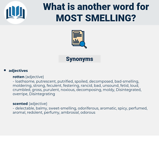 most smelling, synonym most smelling, another word for most smelling, words like most smelling, thesaurus most smelling