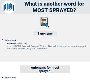 most sprayed, synonym most sprayed, another word for most sprayed, words like most sprayed, thesaurus most sprayed