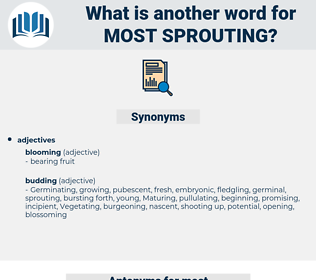 most sprouting, synonym most sprouting, another word for most sprouting, words like most sprouting, thesaurus most sprouting