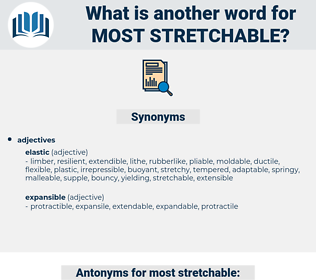 most stretchable, synonym most stretchable, another word for most stretchable, words like most stretchable, thesaurus most stretchable