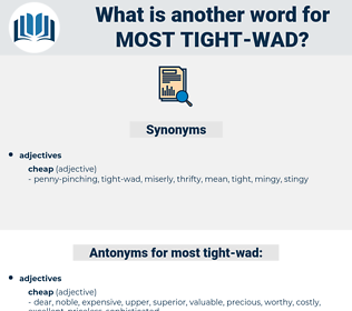 most tight-wad, synonym most tight-wad, another word for most tight-wad, words like most tight-wad, thesaurus most tight-wad