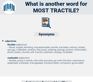 most tractile, synonym most tractile, another word for most tractile, words like most tractile, thesaurus most tractile