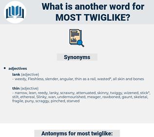 most twiglike, synonym most twiglike, another word for most twiglike, words like most twiglike, thesaurus most twiglike