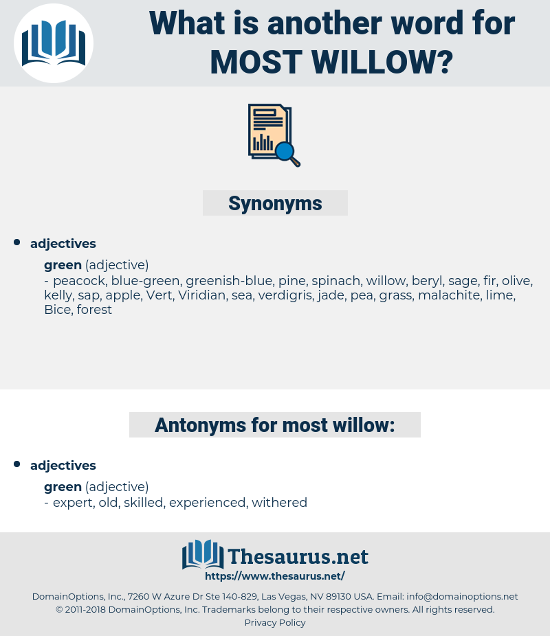 most willow, synonym most willow, another word for most willow, words like most willow, thesaurus most willow