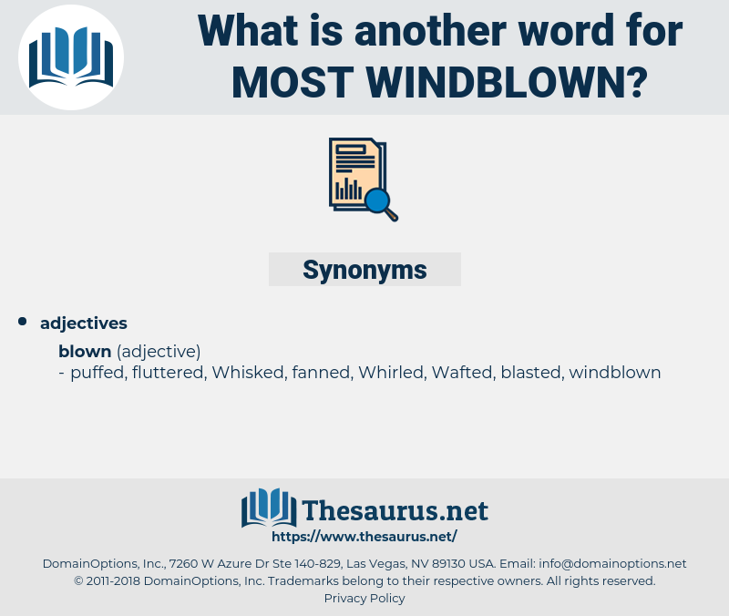 most windblown, synonym most windblown, another word for most windblown, words like most windblown, thesaurus most windblown