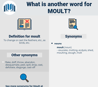 moult, synonym moult, another word for moult, words like moult, thesaurus moult