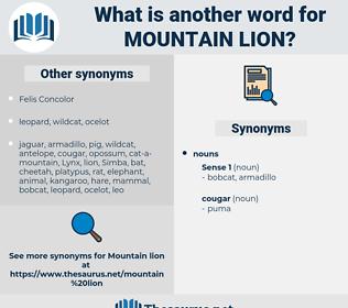 mountain lion, synonym mountain lion, another word for mountain lion, words like mountain lion, thesaurus mountain lion