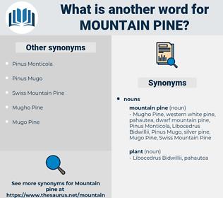mountain pine, synonym mountain pine, another word for mountain pine, words like mountain pine, thesaurus mountain pine