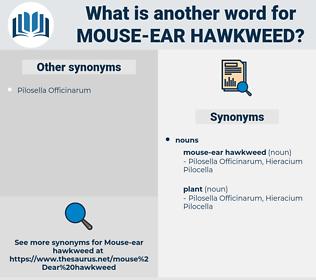 mouse-ear hawkweed, synonym mouse-ear hawkweed, another word for mouse-ear hawkweed, words like mouse-ear hawkweed, thesaurus mouse-ear hawkweed