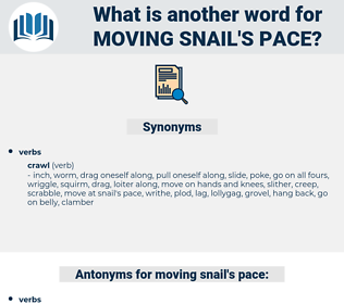 moving snail's pace, synonym moving snail's pace, another word for moving snail's pace, words like moving snail's pace, thesaurus moving snail's pace