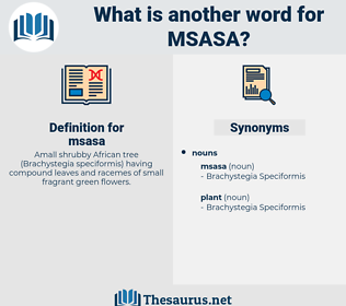 msasa, synonym msasa, another word for msasa, words like msasa, thesaurus msasa