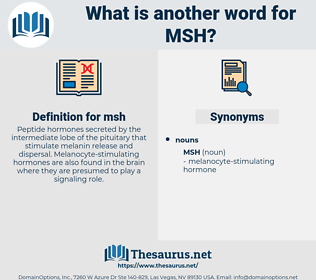 msh, synonym msh, another word for msh, words like msh, thesaurus msh
